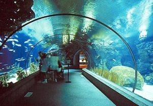 709350omaha-zoo