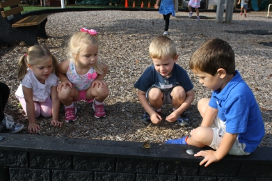 group playground (7)
